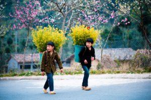 vietnam vietnameseluxurytrvel.com